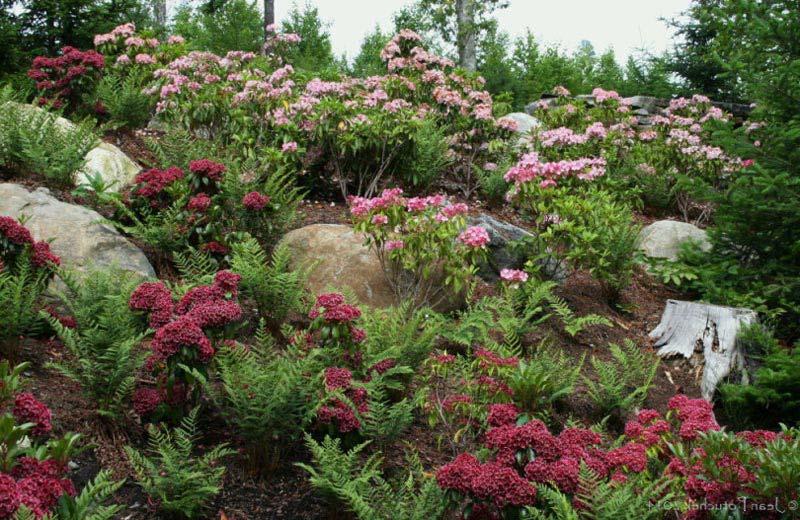 Landscaping-Ideas-Edging-Flower-Beds