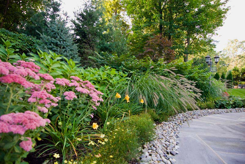 Landscaping-Shrubs-And-Bushes