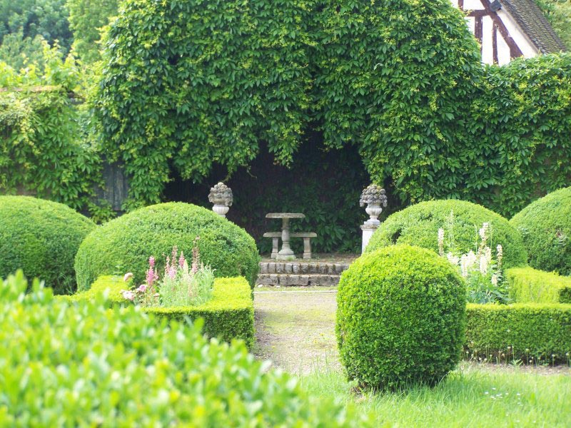Landscaping-Shrubs-Pictures