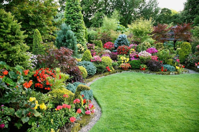 Landscaping-Trees-And-Shrubs-Ideas