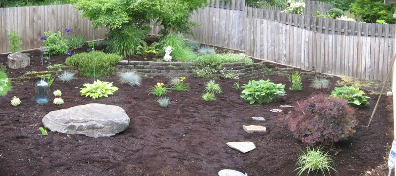 Low-Maintenance-Backyard-Landscaping