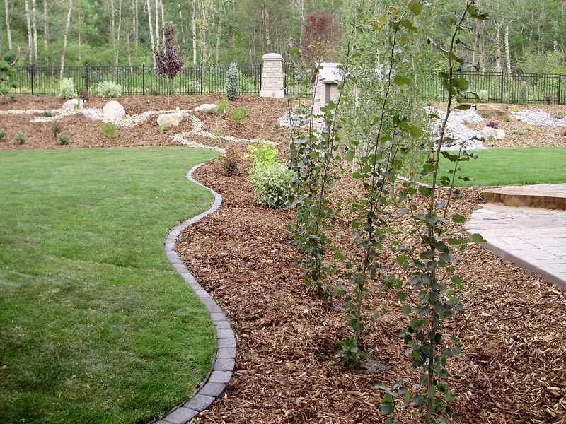 Low Maintenance Garden Ideas Uk Landscape Design