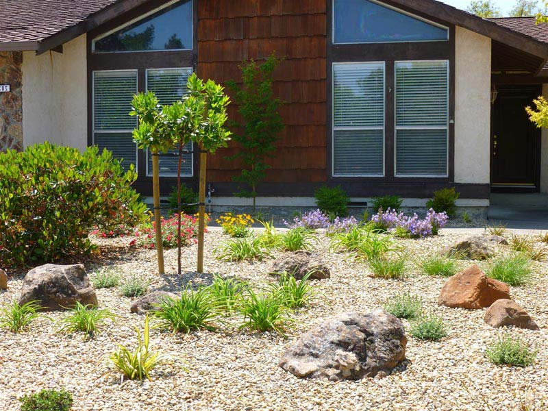 Low-Maintenance-Landscaping-Front-Yard