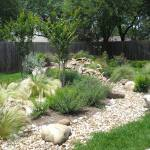 Low-Maintenance-Landscaping-Texas