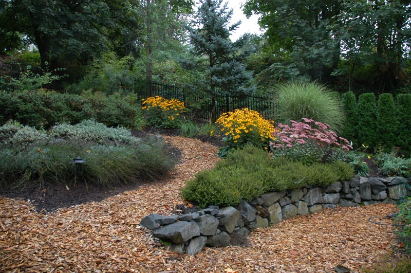 Low-Maintenance-Landscaping