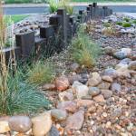 Low-Maintenance-Rock-Garden