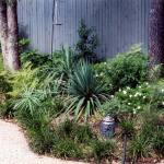 Low-Maintenance-Tropical-Landscaping