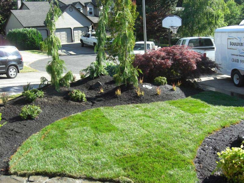Low Cost Landscaping low cost low maintenance landscaping ideas | landscape design