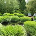 Modern-Landscaping-Images