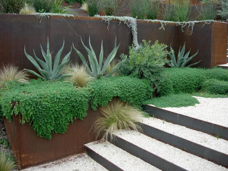 Modern-Landscaping-Plans