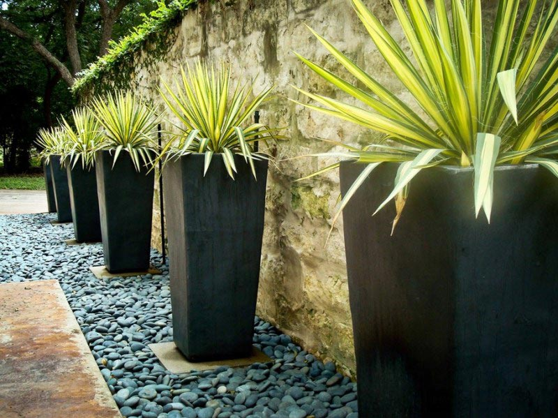 Modern-Landscaping-Planters