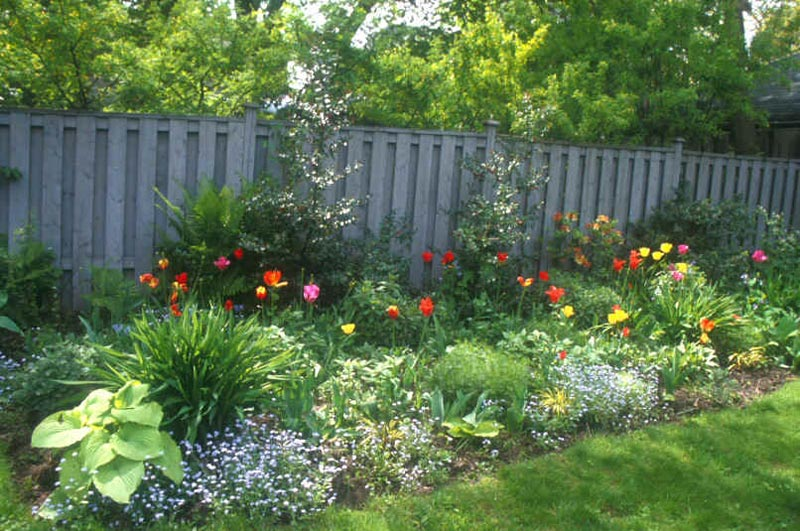 Flower garden ideas full sun landscape design for Perennial landscaping ideas