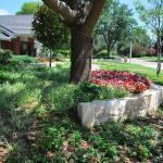 Residential-Landscape-Design-Kansas-City