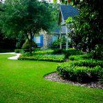 Residential-Landscape-Design-Software