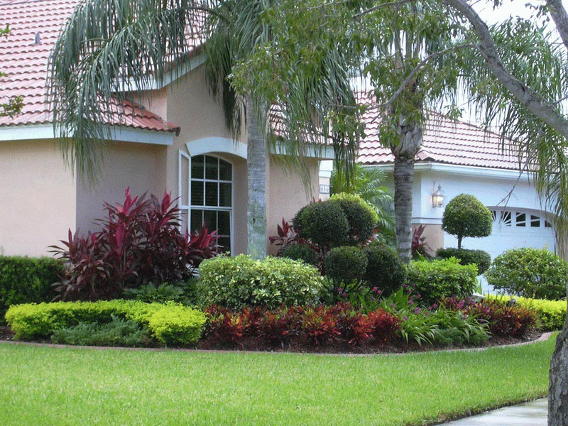Trees-For-Landscaping-Ideas-For-Front-Yard