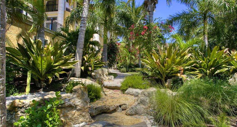 Tropical-Landscaping-Florida