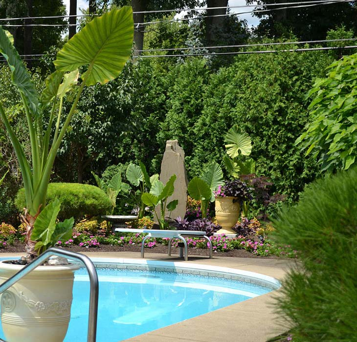 Tropical-Landscaping-Ideas-Around-Pool