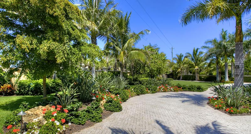Tropical-Landscaping-Ideas