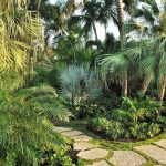 Tropical-Landscaping-With-Palms