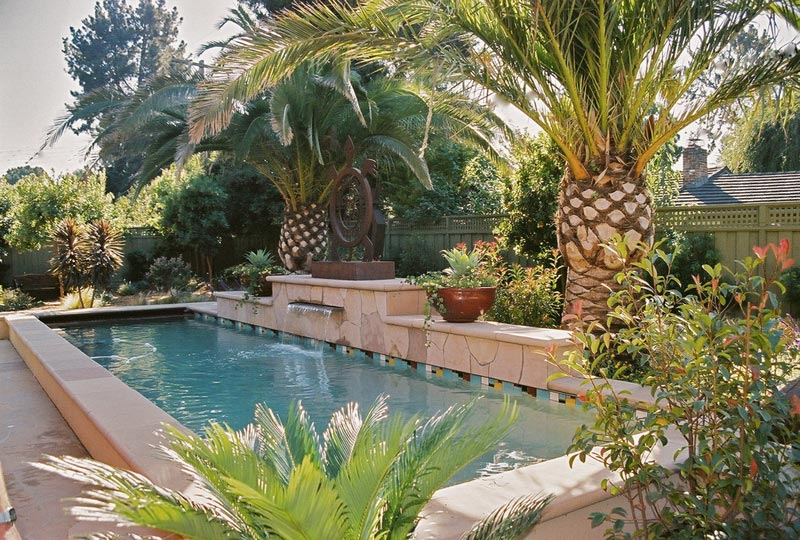 Tropical-Plants-For-Landscaping-Around-A-Pool