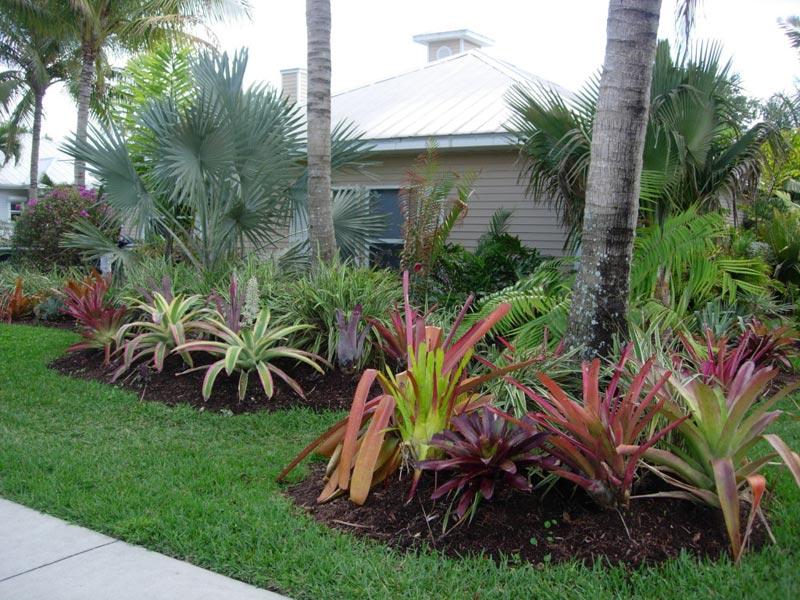 Tropical-Touch-Landscaping
