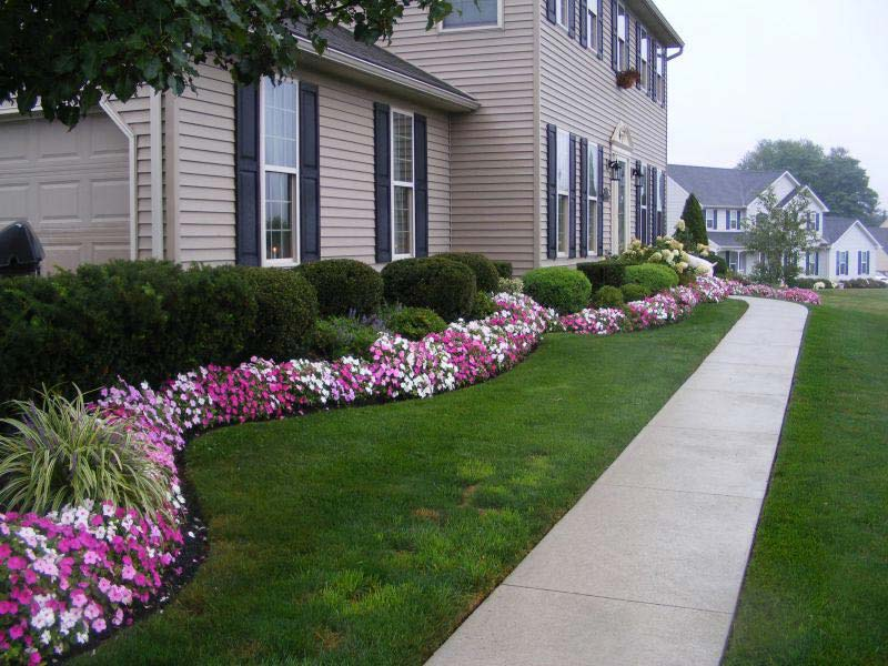 Front-Yard-Landscaping-Plants-And-Shrubs