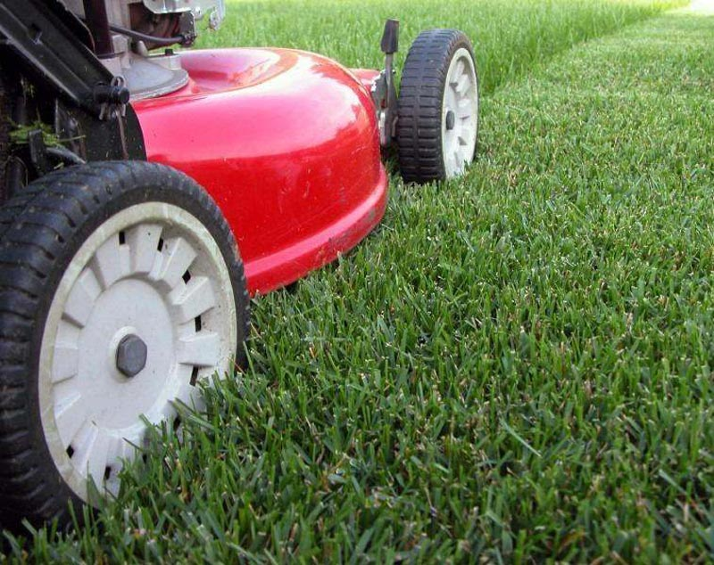 Lawn-Edging-Machine