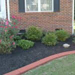 Lawn-Edging-Pictures