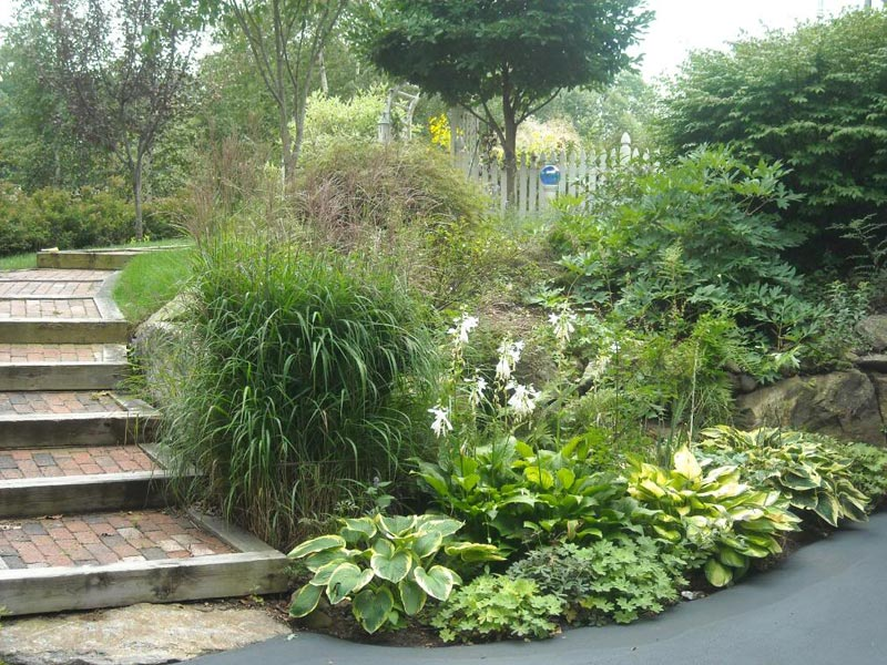 Sloping-Side-Yard-Landscaping-Ideas