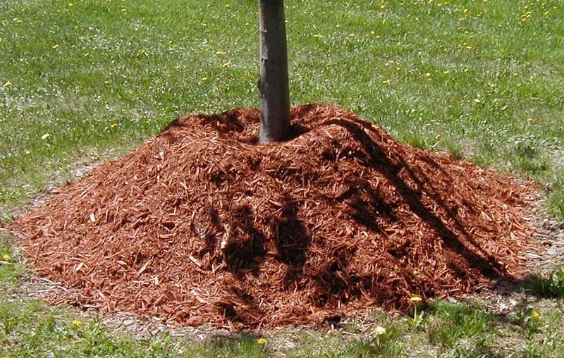 2-Yards-Of-Mulch
