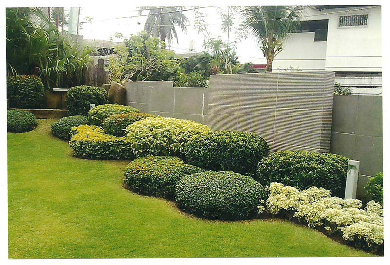 Garden Design Garden Design with Flowering and Evergreen Shrubs
