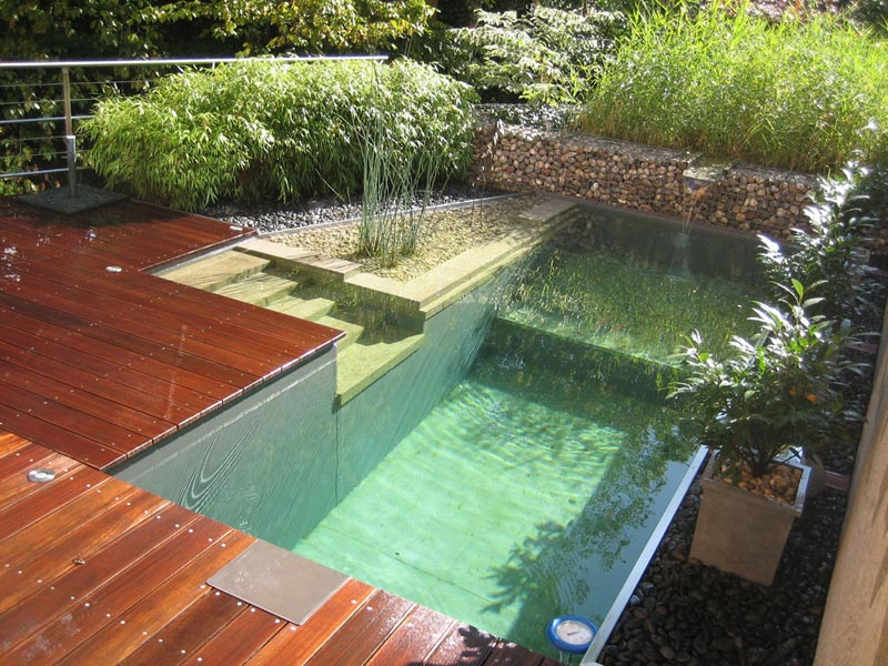 Landscape-Design-Around-Pool