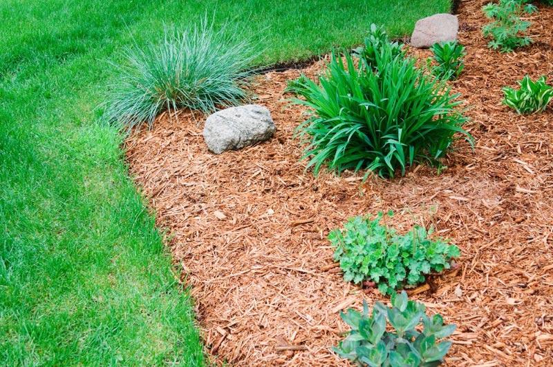 Mulch-For-Garden