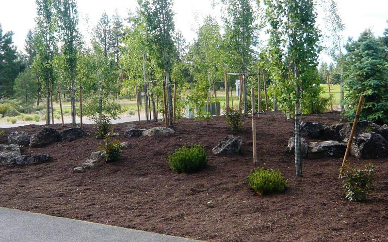 Mulch-Ideas-Landscape
