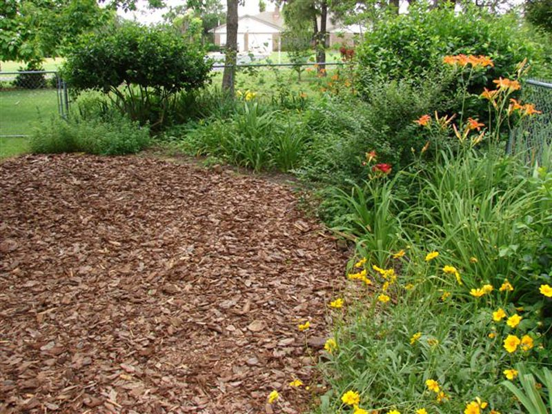 Mulch-In-Garden