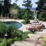 Swimming-Pool-Landscaping-Plants