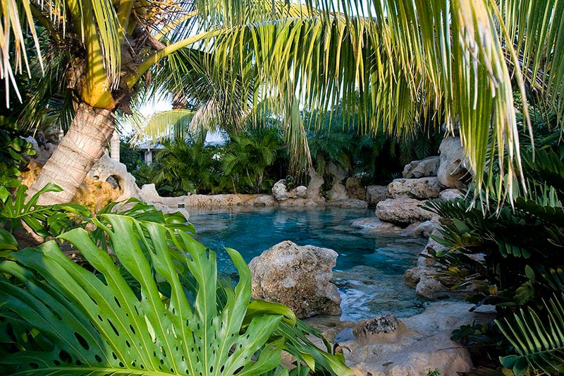 Tropical-Landscaping-Around-A-Pool