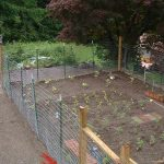 Temporary-Garden-Fencing-Ideas