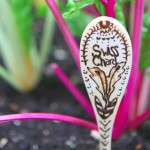 decorative-wood-garden-stakes