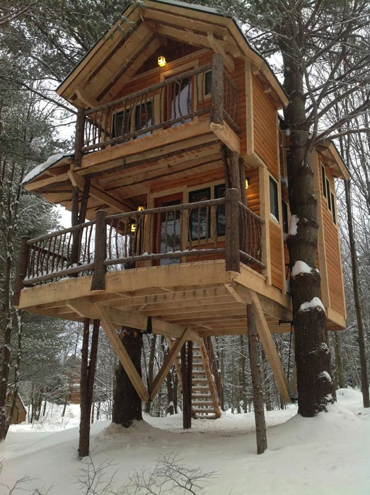 build-a-cabin-from-trees