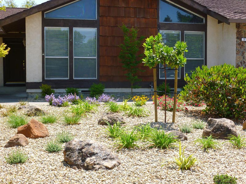 low-maintenance-landscaping-images