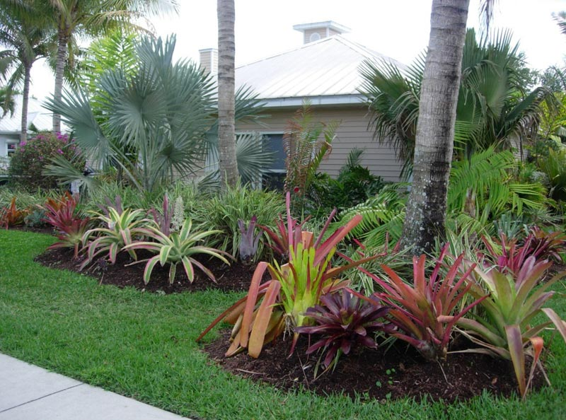 low-maintenance-landscaping-south-florida
