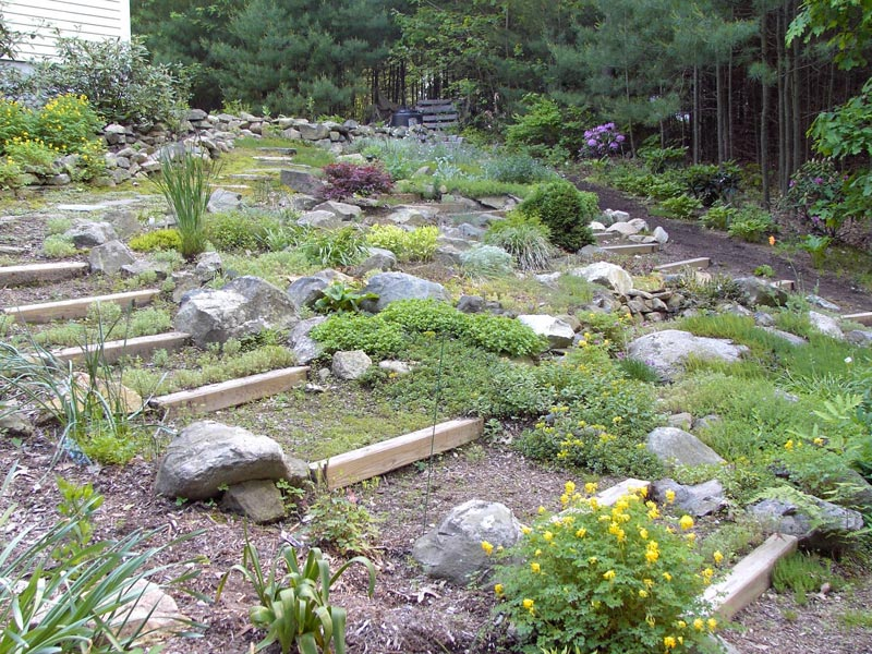 rock-gardening-ideas