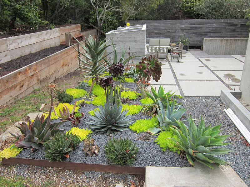 Desert landscaping how to create fantastic desert garden for Desert landscape design ideas