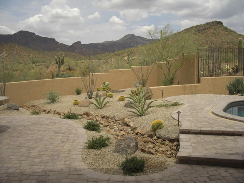 Desert landscaping how to create fantastic desert garden for Desert landscape