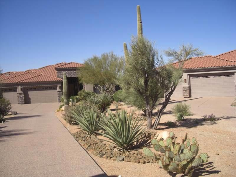desert-landscaping-photos