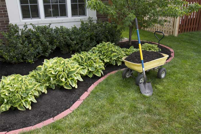 diy-landscaping-cheap
