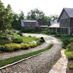 driveway-landscaping-plants