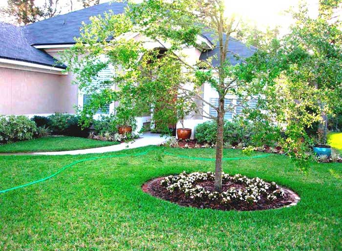 simple-landscaping-ideas-around-trees