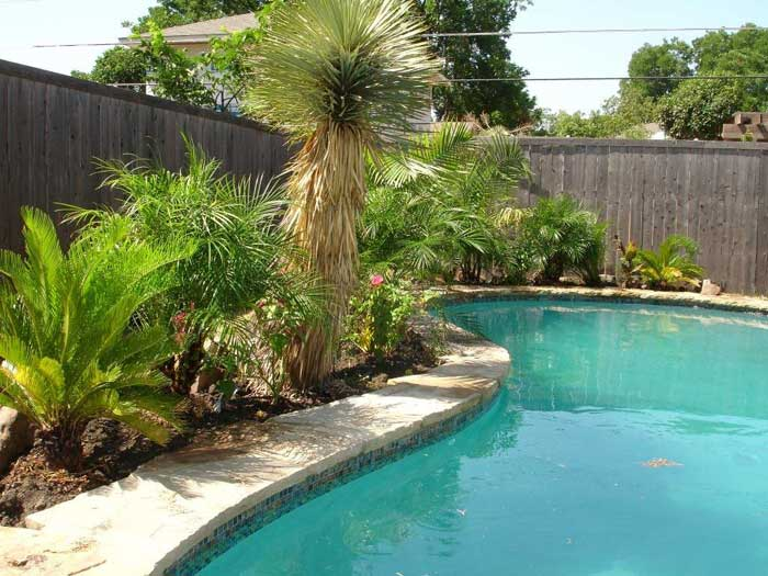 simple-landscaping-ideas-for-pool-area